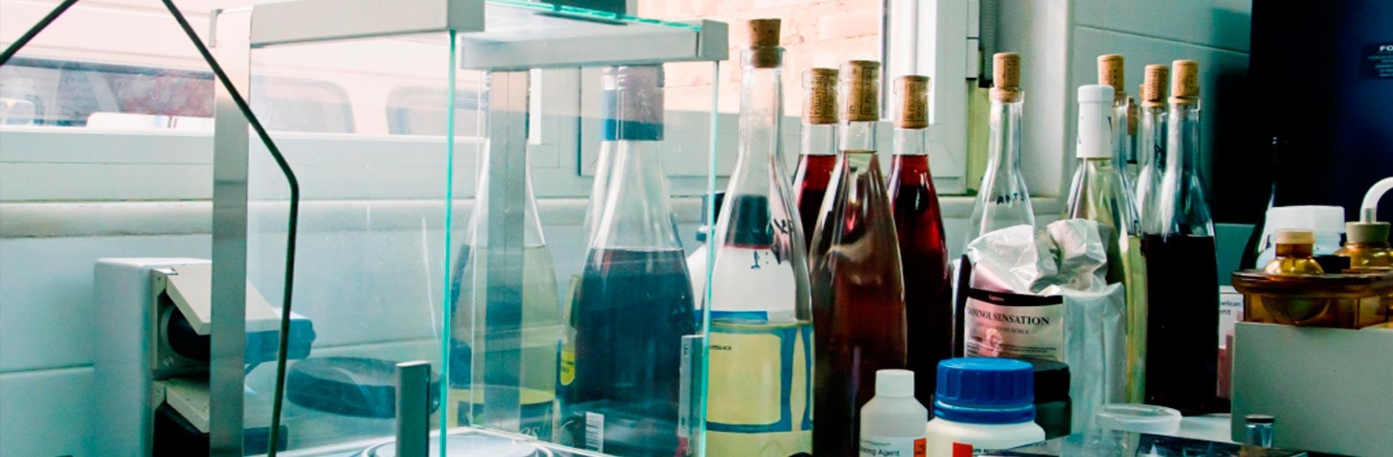laboratorio-vino-don-quijote